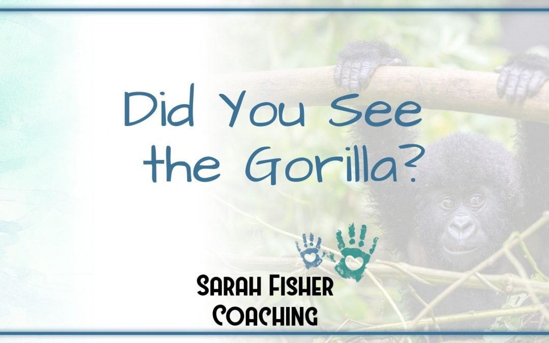 Did You See The Gorilla?